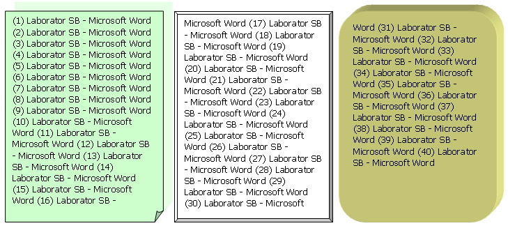 Office Word 2003 - Aplicatia 3-3