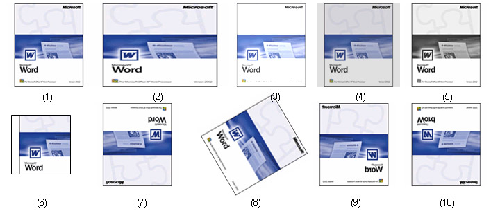 Office Word 2003 - Aplicatia 3-5