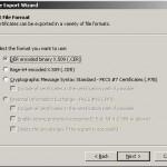 Alegerea formatului de export pentru certificatul digital