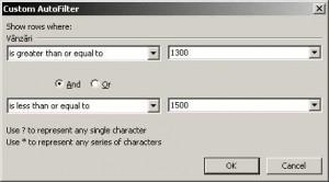 AutoFilter Custom