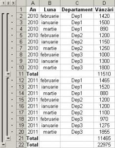 Excel Subtotal exemplu